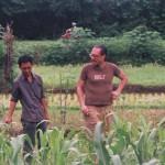 residency in Yogyakarta